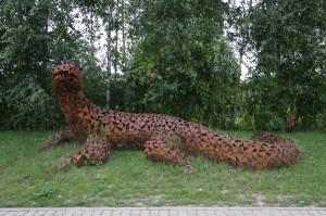 Echse 5 m (2)